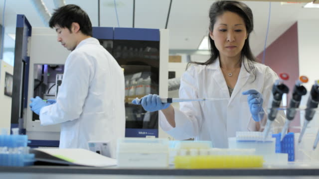 MS PAN Lab technicians getting samples and using micro-pipette / Vancouver, BC, Canada