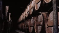 Laborers work to make cognac and wine in France.