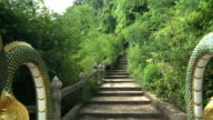 ladder with King of Nagas for going to old temple in forest