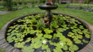 Ladew Toptary Gardens Maryland beautiful sculptured plants Pink Garden fountain with water lillies gardens for tourist