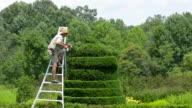 Ladew Toptary Gardens Maryland beautiful sculptured plants Terrace Garden fountain gardens for tourists
