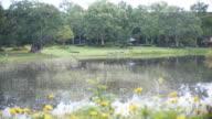 Lake park dolly shot.