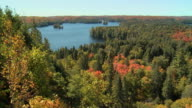 WS HA Lake surrounded with Maples changing colors at Algonquin Park in September / Whitney, Ontario, Canada