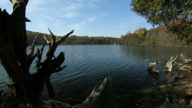 Lake water ripples near driftwood at Green Lakes State Park in New York. Available in HD.