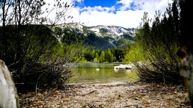 Lakeshore with Mountain