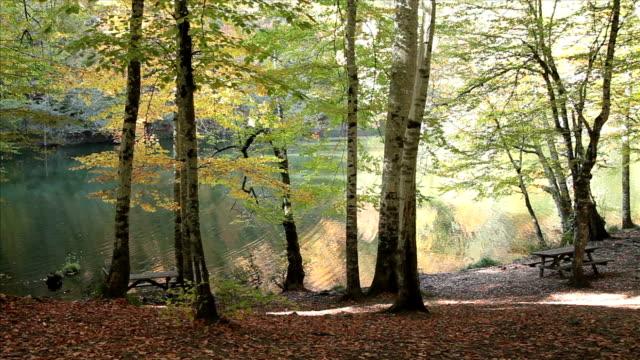HD: Lakeside Picnic Area
