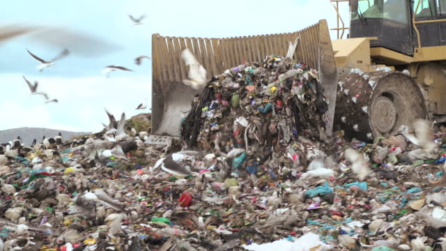 landfill with garbage trucks unloading junk