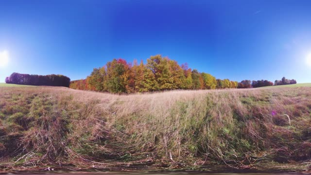 360VR landscape 4k video grassland in autumn