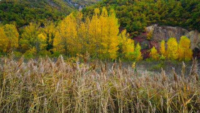 Landscape in Urbasa Range