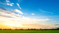 Landscape of a beautiful green field at sunset
