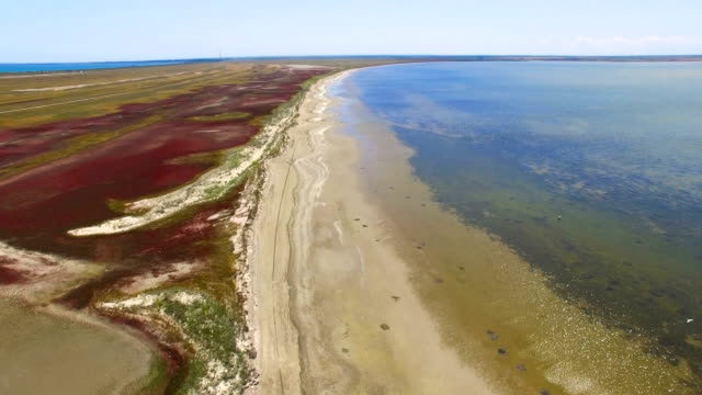Landscape of salt lake with coastal salt marshes, aerial video