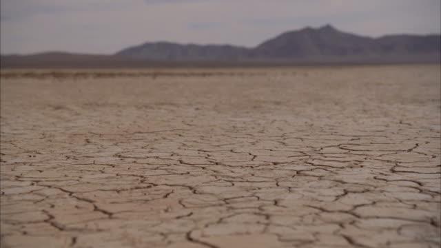 WS Landscape with cracks on arid desert / Mojave, California, USA