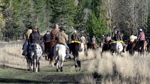 Large group of Cowboys heading off on a cattle drive
