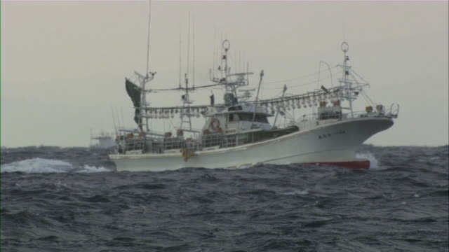 WS Large white fishing boat rolling as in rough sea / Oma, Aomori Prefecture, Japan