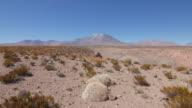 Lascar Volcano landscape