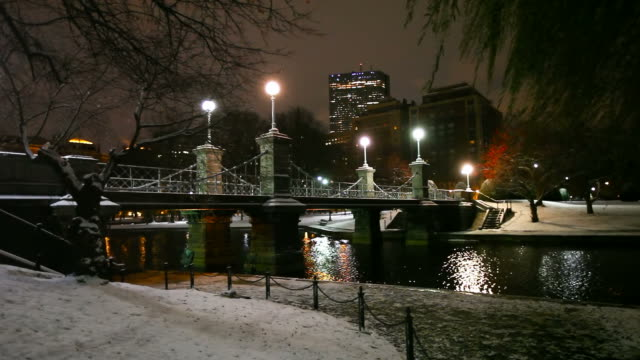 Late Autumn snow in Boston