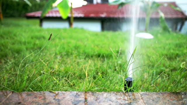 Gazon Sprinklers