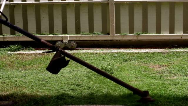 gräset som gräsklippare man i Trädgårdsskötsel