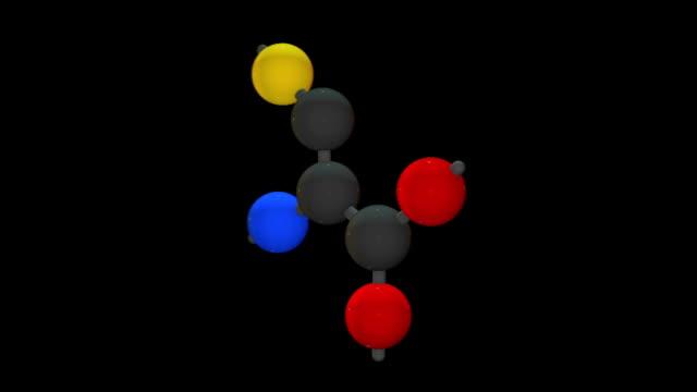 L-cysteine (Cys, C)