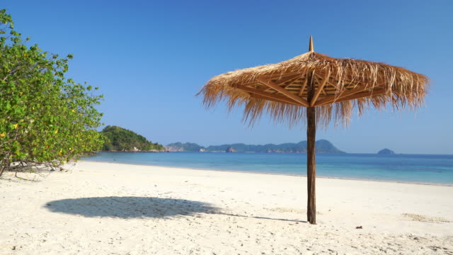 Blatt umbrellaon am tropischen Strand mit weißem sand.