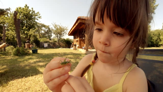 Learning process-A little girl plays with grasshopper