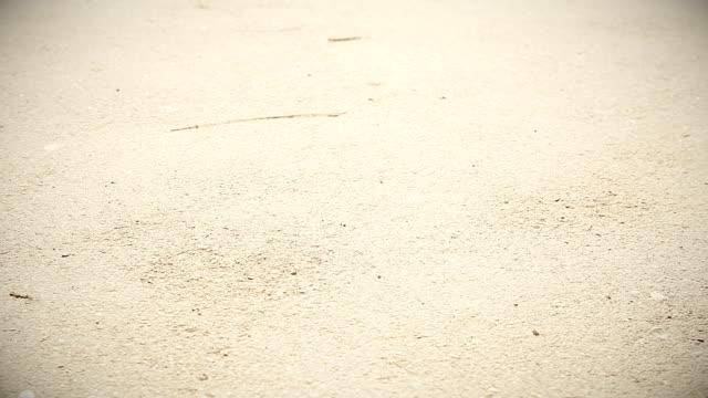 HD: Gambe e ruote di Passeggino