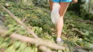 TS Legs of a female runner running through the forest