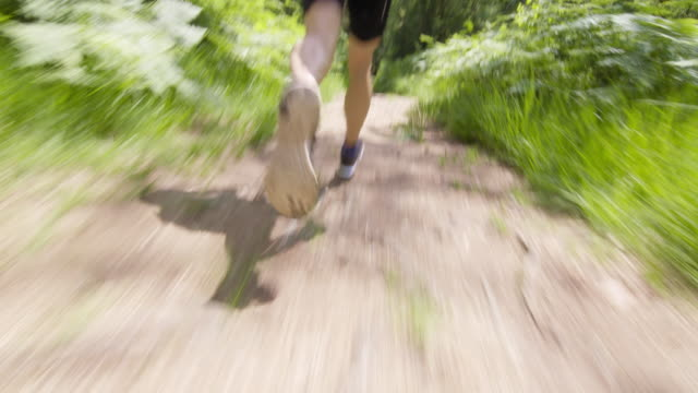 TS Legs of a male runner running through the forest