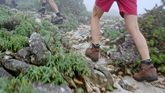 Benen van vrouwelijke wandelaar wandelen de mistige berg met haar vrienden