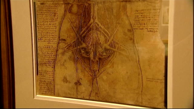 Leonardo Da Vinci anatomical drawings exhibition at Queen's Gallery General views of rooms displaying Leonardo drawings in Queen' Gallery Close shot...