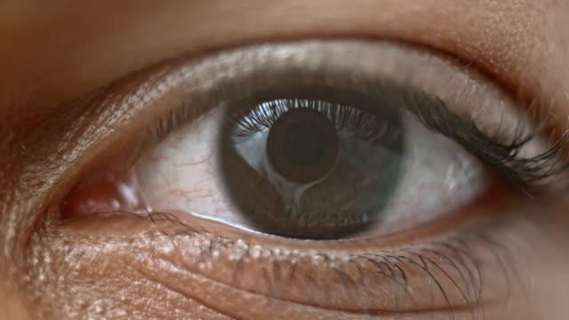 ECU Lid of a brown eye closing