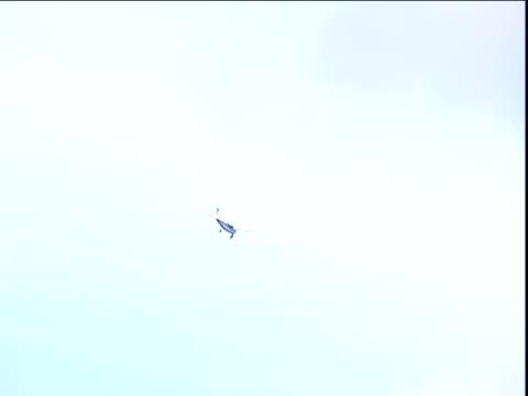 Light aircraft flies over Amazon Rainforest Venezuela