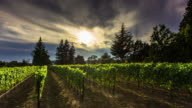 Light and Shadow in California Winery - Time Lapse