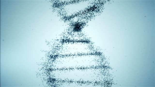 Light Blue DNA