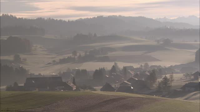 Light fog settles over farmland.