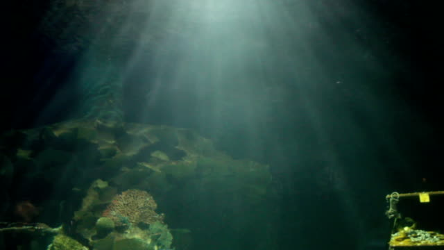 light under sea water