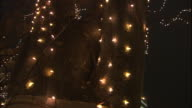 Lighted trees illuminate a busy street at the Sendai Pageant of Starlight in Miyagi-ken Sendai-shi, Japan.