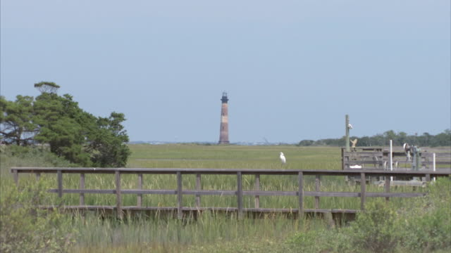 ZI Lighthouse behind fence with bird resting / Folly Beach, South Carolina, United States