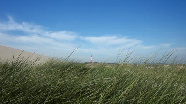 lighthouse near the beach
