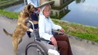 Lily pushes the wheelchair carrying Masao Saito's wife Saeko for the first time on a road along a rice paddy field in Shioya Tochigi Prefecture on...