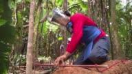 Limpiar la maleza de su terreno es una tarea que aun llena de temor en Vista Hermosa un agreste municipio donde se concentra el mayor numero de...