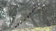 A line of climbers traverse the Aletsch Glacier.