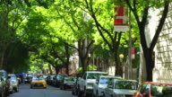 Line of fresh green trees surround the street at Upper West Manhattan New York.