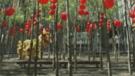 Lion Dance amongst trees