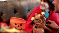 Little boy and his dog dress up for Halloween with dad's help.