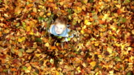 CRANE SHOT: Little boy having fun with autumn leaves