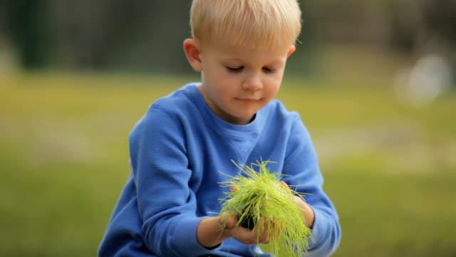 Little Boy Holding Green Grass