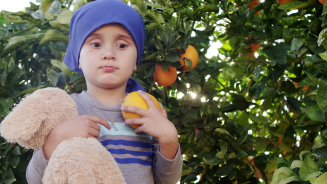 Little Boy Picking Oranges