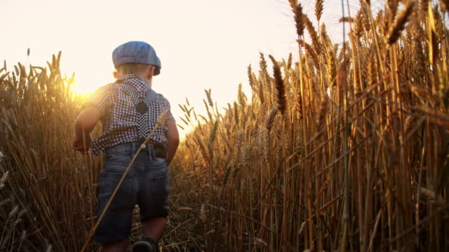 SLO MO Little boy running in the wheat