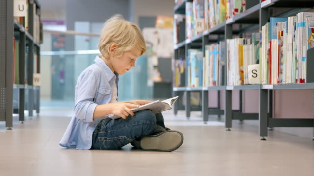 DS Little boy sitting in library and reading